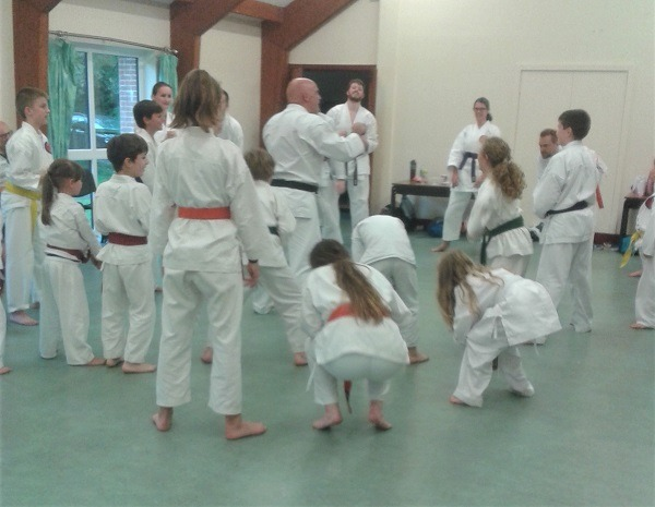 Meadvale karate classes