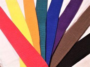 Meadvale karate belt grades