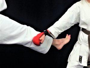 karate leg block