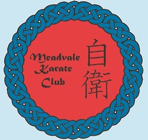 Meadvale karate club Reigate Redhill